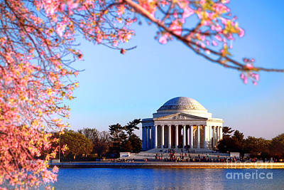 Jefferson Memorial Photograph - Cherry Jefferson by Olivier Le Queinec