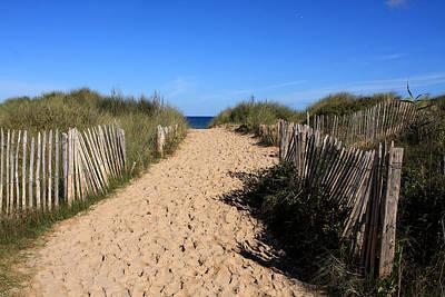 Chestnut Fence To The Beach Print by Aidan Moran