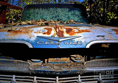 Chevrolet Picking Print by Gwyn Newcombe