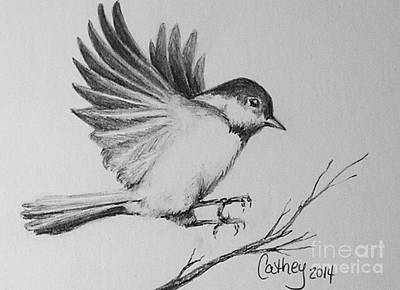 Chickadee Drawing - Chickadee by Catherine Howley