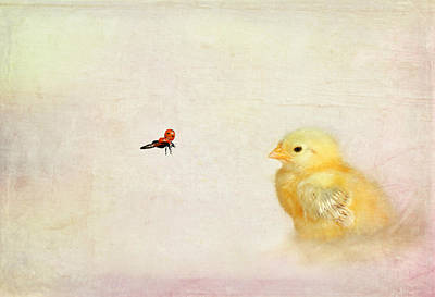 Chicken Mixed Media - Chicken And Beetle by Heike Hultsch