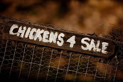 Chicken Photograph - Chicken Sign by Art Block Collections