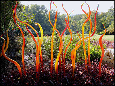 Chihuily At Cheekwood Print by Kae Cheatham