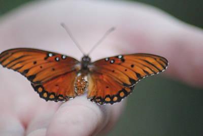 Child And Butterfly - We Shall Renew Again Print by Carolina Liechtenstein