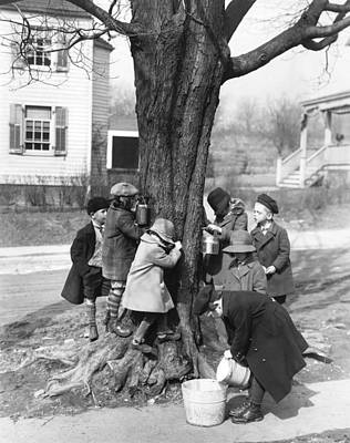 Maple Syrup Photograph - Children Tapping Maple Trees by Underwood Archives
