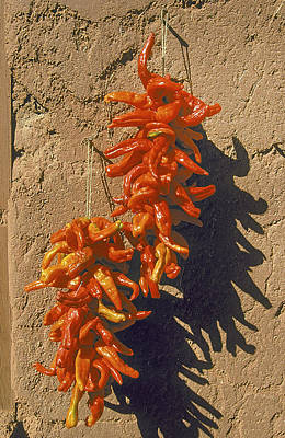 Taos New Mexico Photograph - Chile Ristra by Buddy Mays