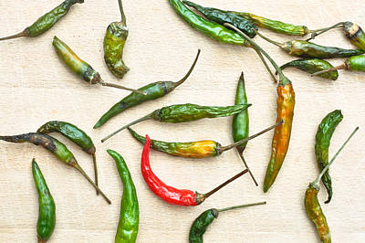 Dried Photograph - Chili Peppers by Tom Gowanlock