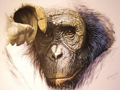 Chimpanzee Original by Julian Wheat