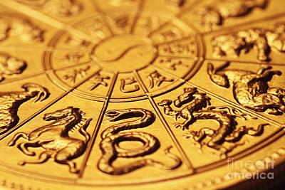 Chinese Zodiacs Print by Lars Ruecker