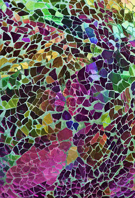 Color Photograph - Chipped by Marcia Colelli