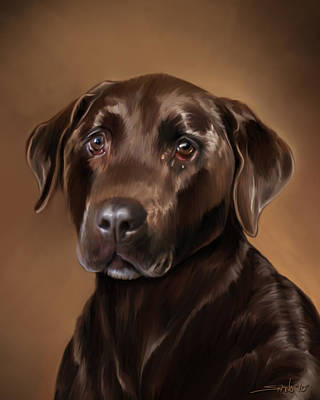 Chocolate Lab Print by Michael Spano