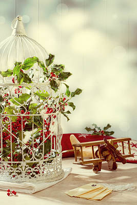 Bird Cages Photograph - Christmas Birdcage by Amanda Elwell