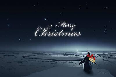 Antarctica Digital Art - Christmas Card - Penguin Black by Cassiopeia Art