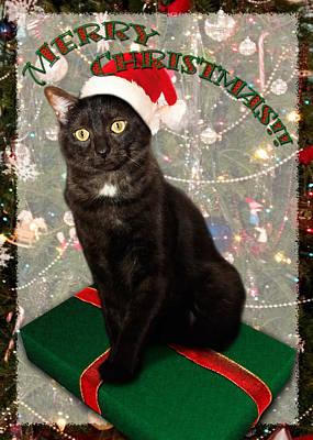 Christmas Digital Art - Christmas Cat by Adam Romanowicz