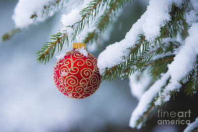 Christmas Ornament Print by Diane Diederich