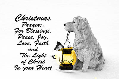 Labs Digital Art - Christmas Prayers by Lorna Rogers Photography