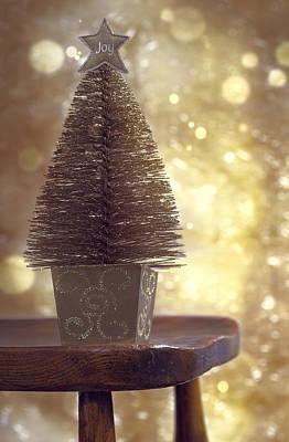 Dappled Light Photograph - Christmas Tree by Amanda Elwell