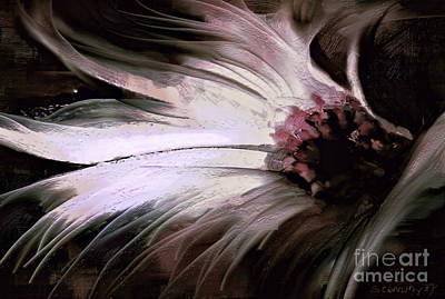 Flower Abstract Painting - Chrysanth by Shanina Conway