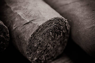 Cigar Close Up Print by Brandon Bourdages