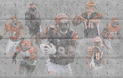 Cincinnati Photograph - Cincinnati Bengals Team by Joe Hamilton