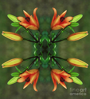 Circle Of Life Print by Inspired Nature Photography Fine Art Photography