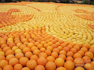 Menton Photograph - Citrus Festival Menton by France  Art