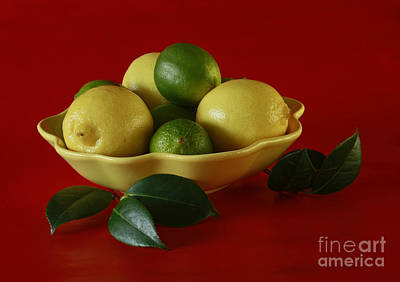 Citrus Passion Print by Inspired Nature Photography Fine Art Photography