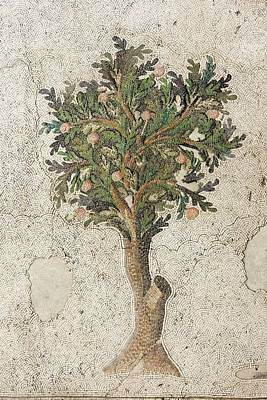 Ceramic Tile Photograph - Citrus Tree Mozaic by David Parker