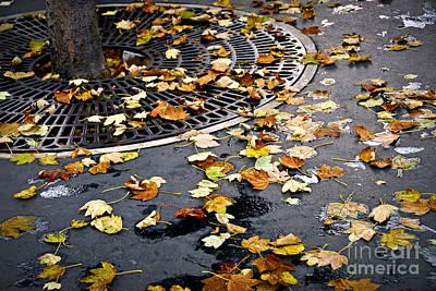 Fall Photograph - City Fall by Elena Elisseeva