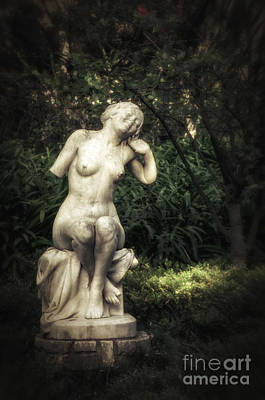 Pedestal Photograph - Classic Statue by Carlos Caetano