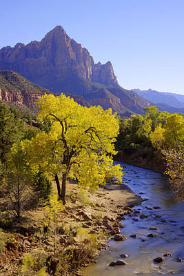 Fall Photograph - Classic Zion by Chad Dutson
