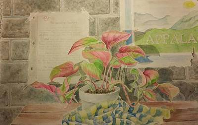 Classroom Plant Print by Gloria Jones
