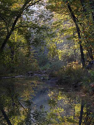Clayton Lake Creekbed Original by Carolyn Fletcher