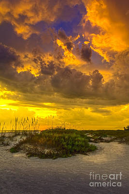 Oat Photograph - Clearing Skies by Marvin Spates