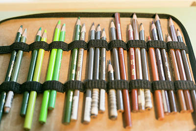 Close Up Of Colored Pencils Print by Julien Mcroberts