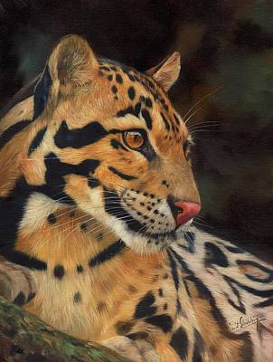 Leopard Painting - Clouded Leopard by David Stribbling