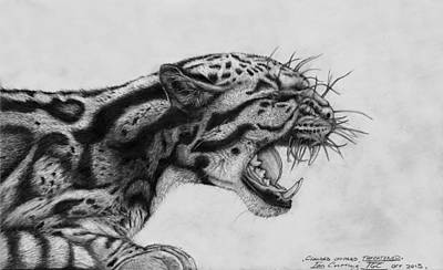 Clouded Leopard Theatened. Print by Ian Cuming
