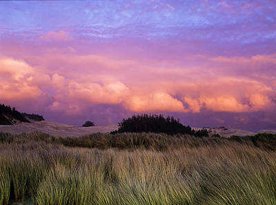 Oregon Dunes National Recreation Area Photograph - Clouds Catch Light From The Setting Sun by Robert L. Potts