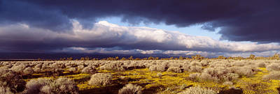 Thunderhead Photograph - Clouds, Mojave Desert, California, Usa by Panoramic Images