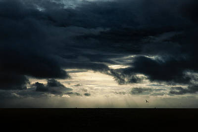 Seagull Photograph - Clouds Sunlight And Seagulls by Hakon Soreide