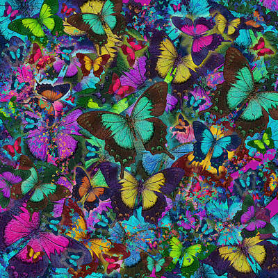 Cloured Butterfly Explosion Print by Alixandra Mullins