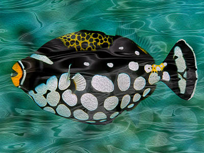 Triggerfish Painting - Clown Triggerfish by Jack Zulli