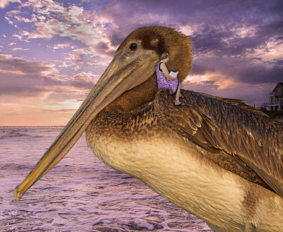 Pelican Digital Art - Coastal Fairytales by Betsy C Knapp