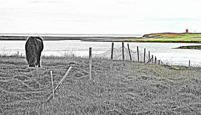 Miss Those Coastal Fields Back Home  Original by Hilde Widerberg