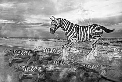 Zebra Mixed Media - Coastal Stripes II by Betsy C Knapp