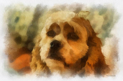 Woodcock Digital Art - Cocker Spaniel Photo Art 05 by Thomas Woolworth