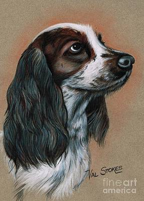 Cocker Spaniel Print by Val Stokes