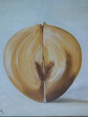 Coconut Painting - Coco De Mer      Female by Conor Murphy
