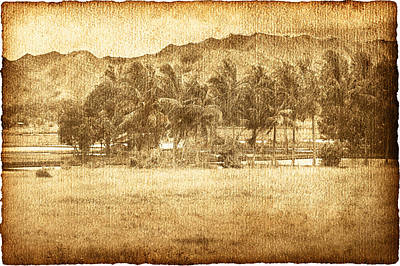 Dream Photograph - Coconut Palms In Valley by Skip Nall