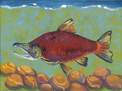 Salmon Painting - Coho Salmon by Peggy Wilson